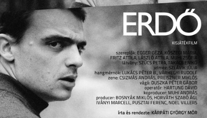 Erdő - teaser