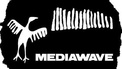 MediaWave 2013